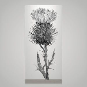 """The Thistle"" (B&W) Canvas Print - Andy Thomas Artworks"