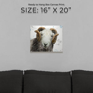 """Stanley"" The Herdwick Ram Small Canvas Print - Andy Thomas Artworks"