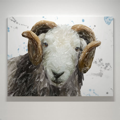 """Stanley"" The Herdwick Ram Small Canvas Print"