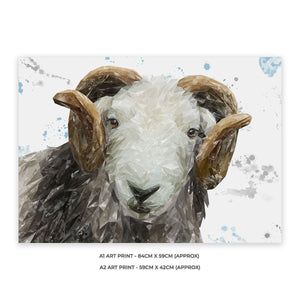 """Stanley"" The Herdwick Ram A1 Unframed Art Print - Andy Thomas Artworks"
