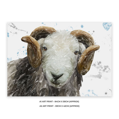 """Stanley"" The Herdwick Ram Unframed Art Print"
