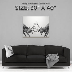 """The Showdown"" Rutting Stags (B&W) Large Canvas Print - Andy Thomas Artworks"