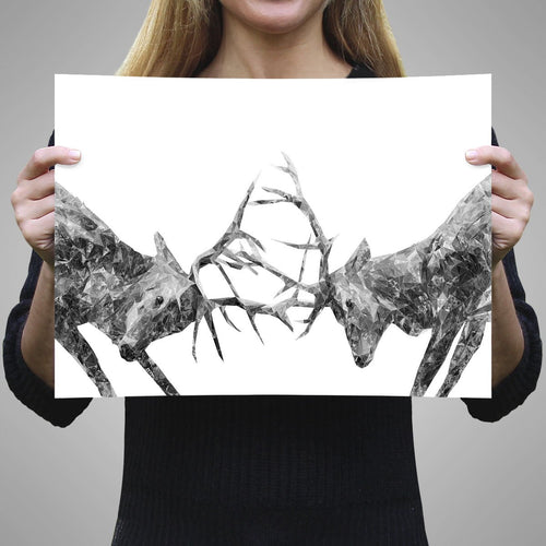 """The Showdown"" Rutting Stags (B&W) A3 Unframed Art Print"