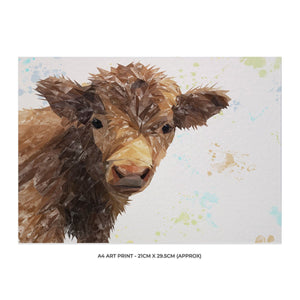 """Buckley"" The Highland Calf A4 Unframed Art Print - Andy Thomas Artworks"