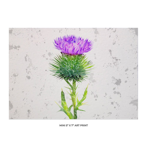 """The Thistle Landscape"" Scottish Thistle 5x7 Mini Print"