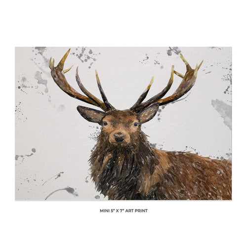 """Rory"" The Stag (Grey Background) 5x7 Mini Print"