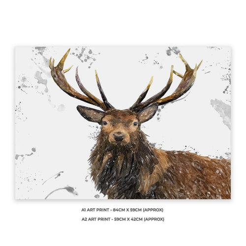 """Rory"" The Stag (Grey Background) A2 Unframed Art Print"