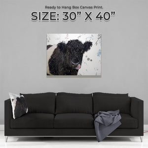"""Eugene"" The Belted Galloway Cow Large Canvas Print - Andy Thomas Artworks"