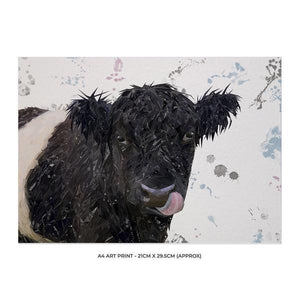 """Eugene"" The Belted Galloway Cow A4 Unframed Art Print - Andy Thomas Artworks"