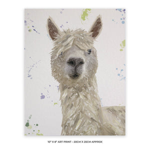 """Rowland"" The Alpaca 10"" x 8"" Unframed Art Print - Andy Thomas Artworks"