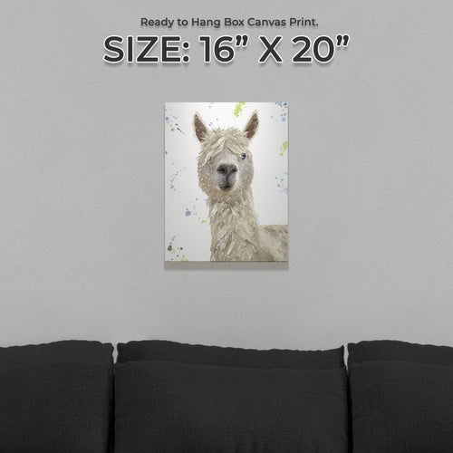 """Rowland"" The Alpaca Small Canvas Print"