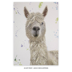 """Rowland"" The Alpaca A3 Unframed Art Print - Andy Thomas Artworks"