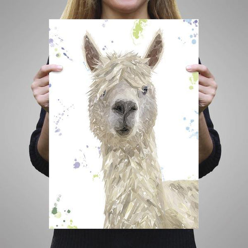 """Rowland"" The Alpaca A2 Unframed Art Print"