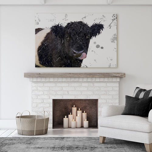 """Eugene"" The Belted Galloway Cow (Grey Background) Massive Canvas Print"