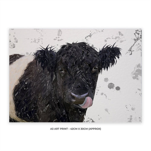 """Eugene"" The Belted Galloway Cow (Grey Background) A3 Unframed Art Print"