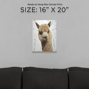 """Alice"" The Alpaca Small Canvas Print - Andy Thomas Artworks"
