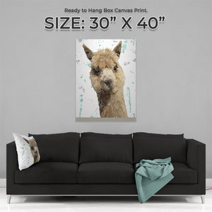 """Alice"" The Alpaca Large Canvas Print - Andy Thomas Artworks"