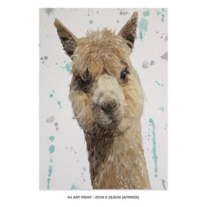 """Alice"" The Alpaca A4 Unframed Art Print - Andy Thomas Artworks"