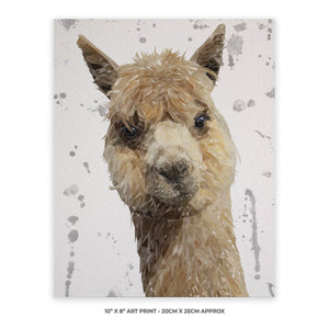 """Alice"" The Alpaca (Grey Background) 10"" x 8"" Unframed Art Print - Andy Thomas Artworks"