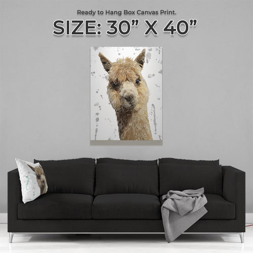"""Alice"" The Alpaca (Grey Background) Large Canvas Print"