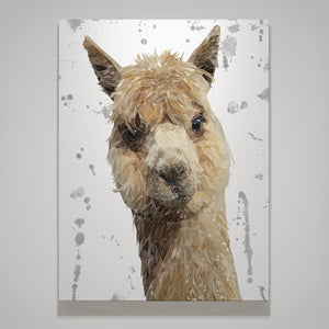 """Alice"" The Alpaca (Grey Background) Small Canvas Print - Andy Thomas Artworks"