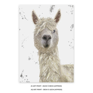 """Rowland"" The Alpaca (Grey Background) A2 Unframed Art Print - Andy Thomas Artworks"
