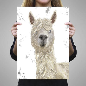 """Rowland"" The Alpaca (Grey Background) A3 Unframed Art Print - Andy Thomas Artworks"