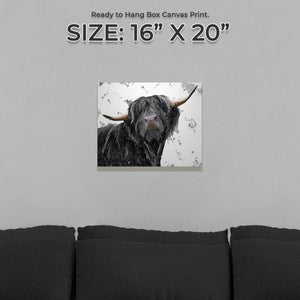 """Barnaby"" The Highland Bull (Grey Background) Small Canvas Print - Andy Thomas Artworks"