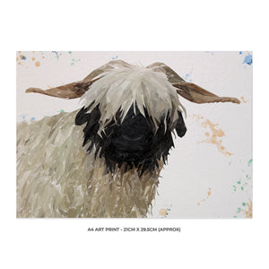 """Bertha"" The Valais Blacknose Sheep A4 Unframed Art Print - Andy Thomas Artworks"