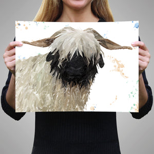 """Bertha"" The Valais Blacknose Sheep A3 Unframed Art Print - Andy Thomas Artworks"
