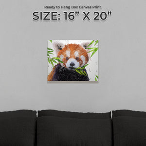 """Red"" The Red Panda Small Canvas Print - Andy Thomas Artworks"