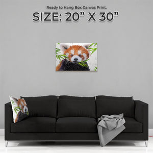 """Red"" The Red Panda Medium Canvas Print - Andy Thomas Artworks"