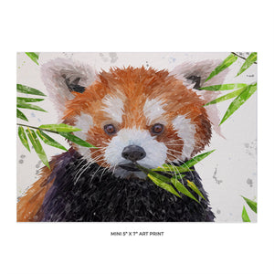 """Red"" The Red Panda 5x7 Mini Print"