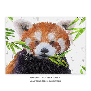 """Red"" The Red Panda A2 Unframed Art Print - Andy Thomas Artworks"
