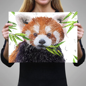 """Red"" The Red Panda A3 Unframed Art Print - Andy Thomas Artworks"
