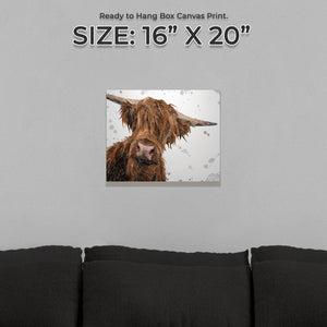 """Mac"" (Grey Background) The Highland Bull Small Canvas Print - Andy Thomas Artworks"