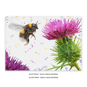 """Highland Honey"" The Bee and The Thistle A2 Unframed Art Print - Andy Thomas Artworks"
