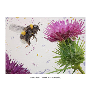 """Highland Honey"" The Bee and The Thistle A4 Unframed Art Print - Andy Thomas Artworks"