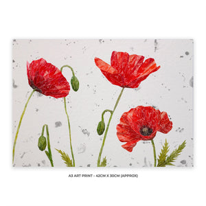 """Hope"" Poppies A3 Unframed Art Print (Grey Background)"