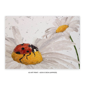"NEW! ""Lady Daisy"" Ladybird and Daisies (Grey Background) A3 Unframed Art Print"
