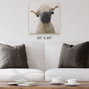 """Betty"" The Valais Blacknose Sheep (Grey Background) Square Canvas Print - Andy Thomas Artworks"