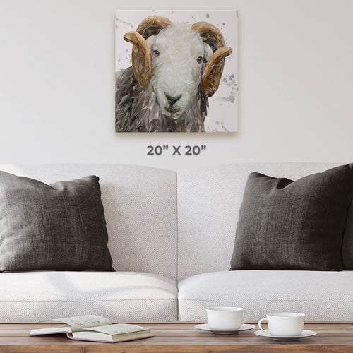 """Stanley"" The Herdwick Ram (Grey Background) Square Canvas Print"