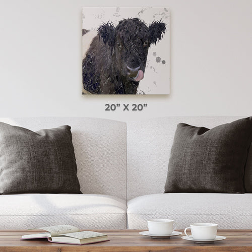 """Eugene"" The Belted Galloway Cow (Grey Background) Square Canvas Print"
