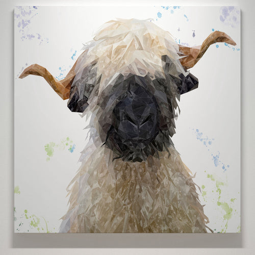 """Betty"" The Valais Blacknose Sheep Square Canvas Print"