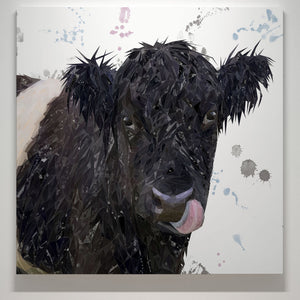 """Eugene"" The Belted Galloway Cow Square Canvas Print - Andy Thomas Artworks"