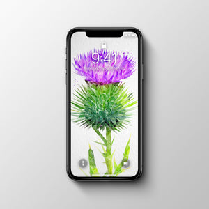 The Thistle Phone Wallpaper - Andy Thomas Artworks