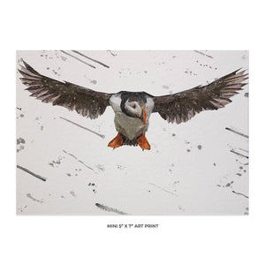 """Frank"" The Puffin (Grey Background) 5x7 Mini Print - Andy Thomas Artworks"