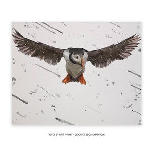 """Frank"" The Puffin (Grey Background) 10"" x 8"" Unframed Art Print - Andy Thomas Artworks"