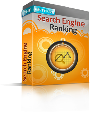 Search Engine Ranking Report