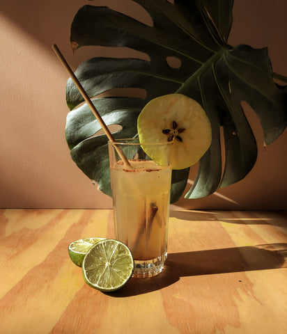 Straw by Straw Mocktail Lemonade Moscow Mule